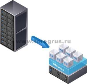 виртуализация сети спб