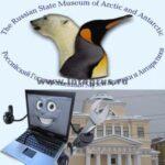 компьютерная поддержка музея Арктики и Антарктики