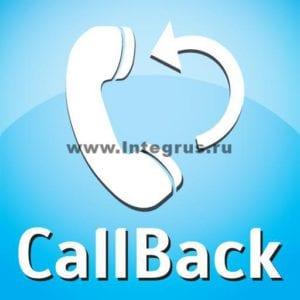 Установка Call-back виджета для Callbackhunter, Roistat