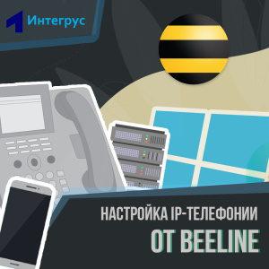 Настройка IP-телефонии Beeline