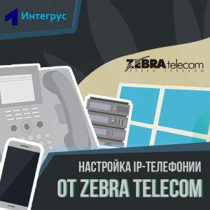 IP-телефония Зебра Телком